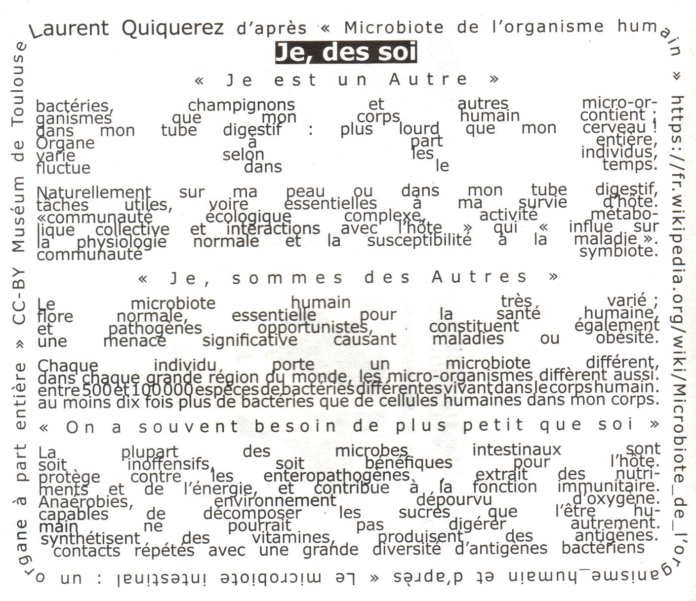 """Typoésie """"Je, des Soi"""", extrait de DéZopilant n°23"""